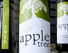 Apple Tree Cider