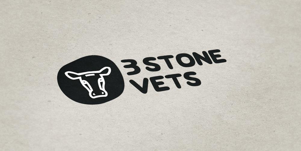 3 Stone Vets brand development