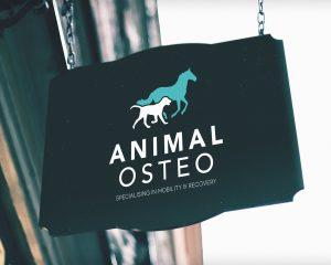 Animal Osteo